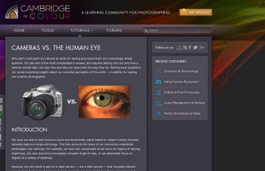 http://www.cambridgeincolour.com/tutorials/cameras-vs-human-eye.htm