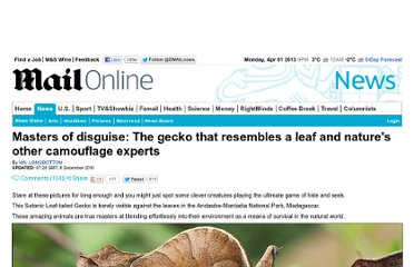 http://www.dailymail.co.uk/news/article-2071125/Masters-disguise-The-gecko-resembles-leaf-natures-camouflage-experts.html