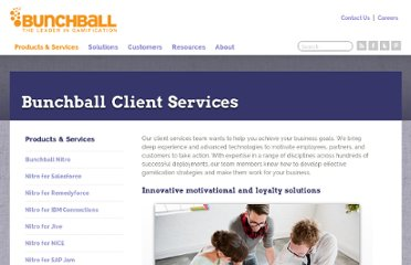 http://www.bunchball.com/products/clientservices