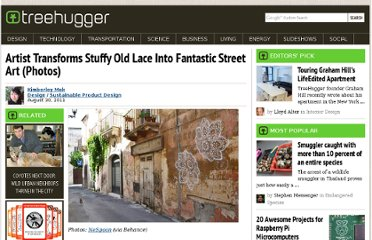 http://www.treehugger.com/sustainable-product-design/artist-transforms-stuffy-old-lace-into-fantastic-street-art-photos.html