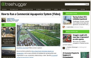 http://www.treehugger.com/green-food/how-run-commercial-aquaponics-system-video.html