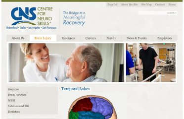 http://www.neuroskills.com/brain-injury/temporal-lobes.php