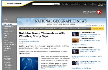 http://news.nationalgeographic.com/news/2006/05/060508_dolphins.html