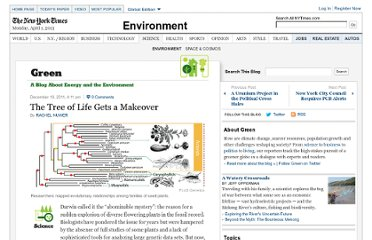 http://green.blogs.nytimes.com/2011/12/19/the-tree-of-life-gets-a-makeover/