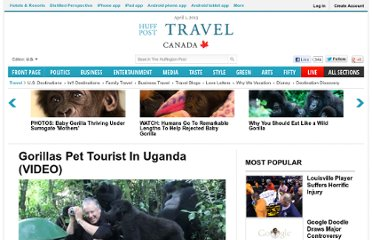 http://www.huffingtonpost.com/2011/12/22/gorillas-pet-tourist-in-u_n_1165365.html
