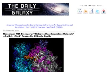 http://www.dailygalaxy.com/my_weblog/2011/12/messenger-rna-discovery-biologys-most-important-molecule-built-in-clock-causes-its-ultimate-death-.html