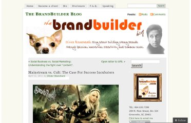 http://thebrandbuilder.wordpress.com/2011/04/12/mainstream-vs-cult-the-case-for-success-incubators/