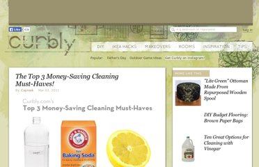 http://www.curbly.com/users/capreek/posts/9969-the-top-3-money-saving-cleaning-must-haves