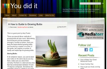 http://www.youdidit.co.za/a-how-to-guide-to-growing-bulbs/