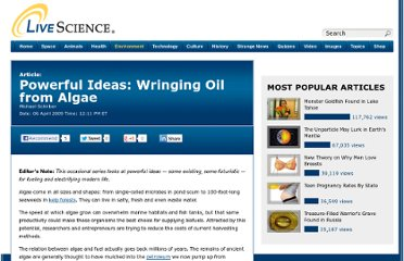 http://www.livescience.com/3454-powerful-ideas-wringing-oil-algae.html