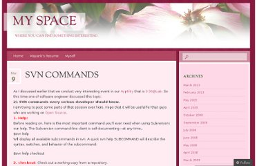http://my330space.wordpress.com/2007/03/09/svn-commands/
