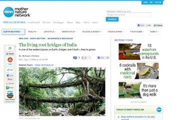 http://www.mnn.com/earth-matters/wilderness-resources/stories/the-living-root-bridges-of-india