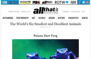 http://all-that-is-interesting.com/the-worlds-six-smallest-and-deadliest-animals