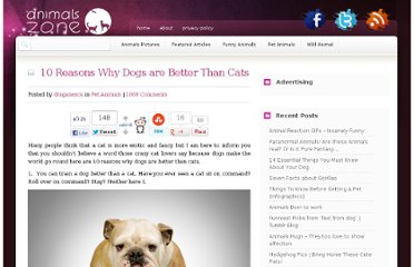 http://www.animals-zone.com/10-reasons-why-dogs-are-better-than-cats