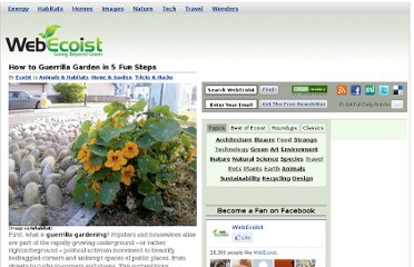 http://webecoist.momtastic.com/2009/03/04/the-joy-of-being-a-criminal-how-to-guerrilla-garden-in-5-fun-steps/