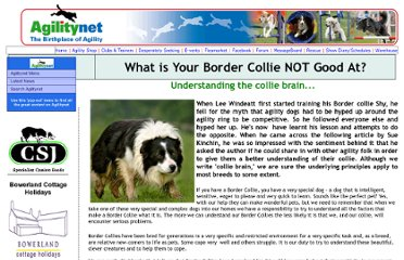 http://agilitynet.co.uk/training/bordercollie_suekitchen_leewindeatt.html