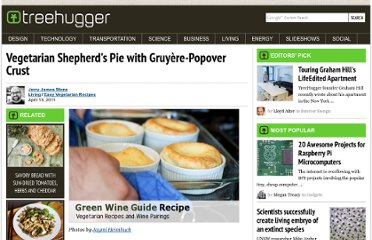 http://www.treehugger.com/easy-vegetarian-recipes/vegetarian-shepherds-pie-with-gruya-re-popover-crust.html