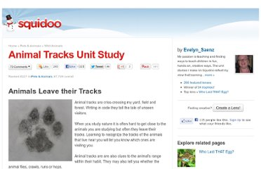 http://www.squidoo.com/animal_tracks#module9715763