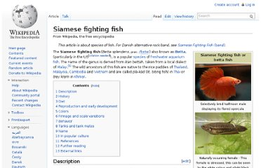 http://en.wikipedia.org/wiki/Siamese_fighting_fish