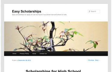 http://scholarshipseasy.com/scholarships-for-high-school-seniors/