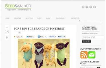 http://seedwalker.com/2012/01/top-5-tips-for-brands-on-how-to-use-pinterest/