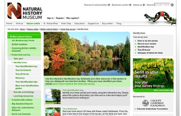 http://www.nhm.ac.uk/nature-online/british-natural-history/urban-tree-survey/identify-trees/index.html