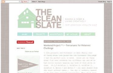 http://brittanyanddylan.blogspot.com/2011/11/weekend-project-1-terrariums-for.html