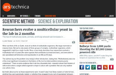 http://arstechnica.com/science/news/2012/01/researchers-evolve-a-multicellular-yeast-in-the-lab-in-2-months.ars