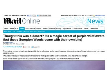 http://www.dailymail.co.uk/news/article-2087675/Thought-desert-Its-magic-carpet-purple-Scorpion-Weeds.html