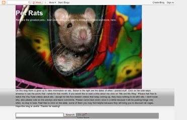 http://ratsforpets.blogspot.com/2008/03/different-breeds-of-rats.html