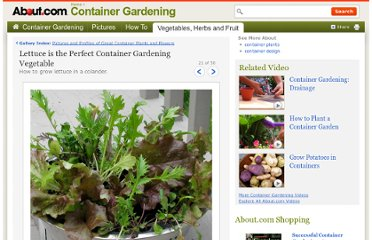 http://containergardening.about.com/od/photogallery/ig/Wordless-Wednesday-Pictures/Lettuce-Colander.htm