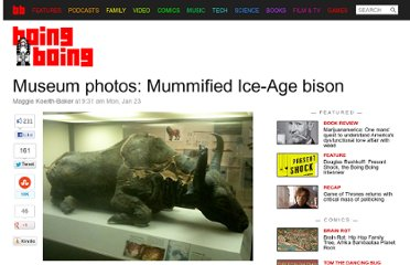 http://boingboing.net/2012/01/23/museum-photos-mummified-ice-a.html