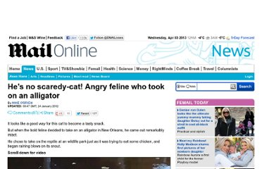 http://www.dailymail.co.uk/news/article-2090936/Wham-Bam-Angry-cat-rains-blows-alligator-tries-eat-chicken.html