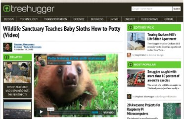 http://www.treehugger.com/natural-sciences/wildlife-sanctuary-teaches-baby-sloths-how-to-potty-video.html