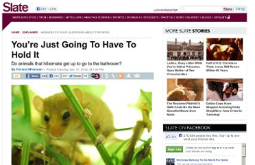 http://www.slate.com/articles/health_and_science/explainer/2012/01/snoring_dormouse_video_do_hibernating_animals_wake_up_to_go_to_the_bathroom_.html