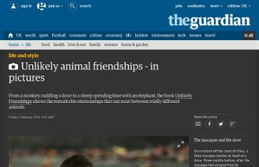 http://www.guardian.co.uk/lifeandstyle/gallery/2012/feb/03/unlikely-animal-friendships-in-pictures