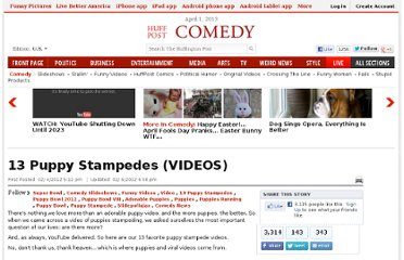 http://www.huffingtonpost.com/2012/02/04/13-puppy-stampedes-videos_n_1254761.html#s663916&title=Socks_with_Sandals