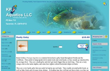 http://sealifeinc.net/catalog/product_info.php?cPath=34&products_id=161