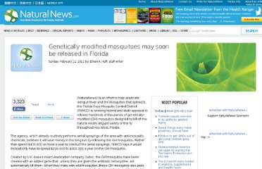 http://www.naturalnews.com/034943_genetically_modified_mosquitoes_Florida_disease.html