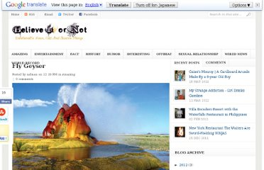 http://believe-or-not.blogspot.com/2010/12/fly-geyser.html