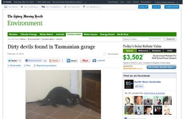 http://www.smh.com.au/environment/conservation/dirty-devils-found-in-tasmanian-garage-20120215-1t5ns.html