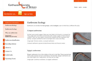 http://www.earthwormsoc.org.uk/earthworm-information/earthworm-information-page-2
