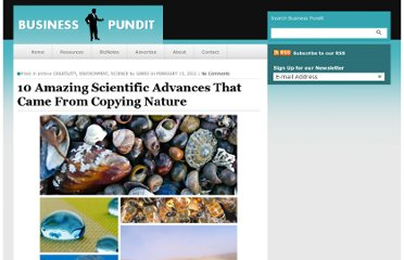 http://www.businesspundit.com/10-amazing-scientific-advances-that-came-from-copying-nature/