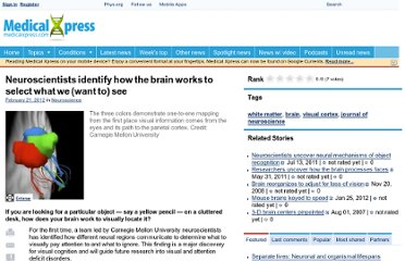 http://medicalxpress.com/news/2012-02-neuroscientists-brain.html