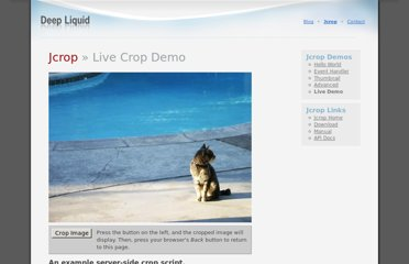 http://deepliquid.com/projects/Jcrop/demos.php?demo=live_crop