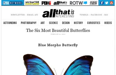 http://all-that-is-interesting.com/most-beautiful-butterflies