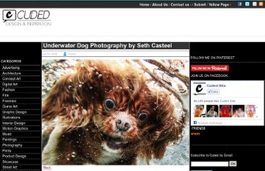 http://www.cuded.com/2012/02/underwater-dog-photography-by-seth-casteel/