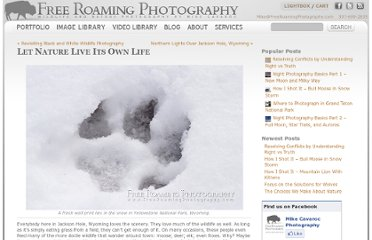 http://blog.freeroamingphotography.com/4342/wildlife/let-nature-live-its-own-life/