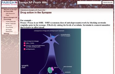https://sites.google.com/a/parishepiscopal.org/savage-ap-psych-wiki/home/drug-action-in-the-synapse
