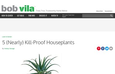 http://www.bobvila.com/blogs/five-nearly-kill-proof-house-plants/